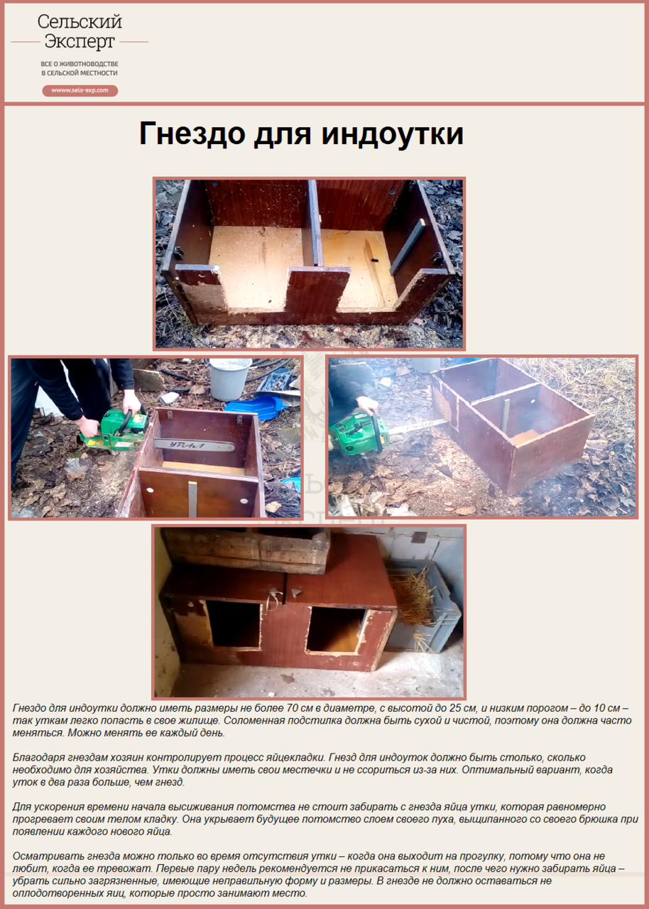 Как построить гнезда для индоуток своими руками: чертежи 55