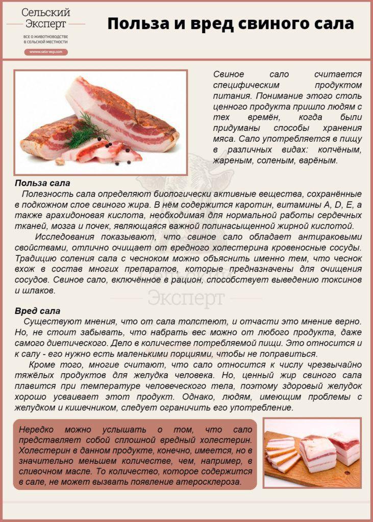 Сало свиное с прослойкой калорийность