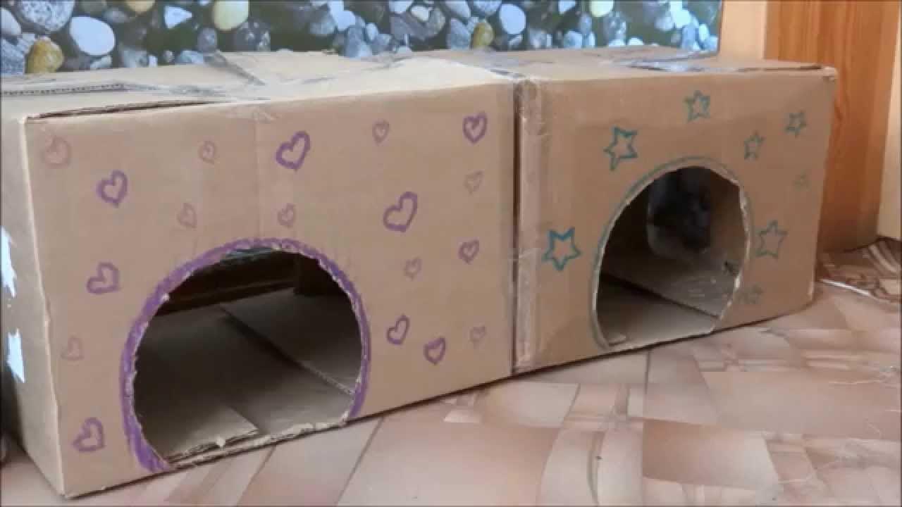 Домики для крыс из коробок своими руками