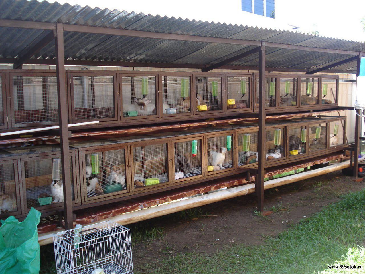 Кроличья ферма : мини-ферма своими руками