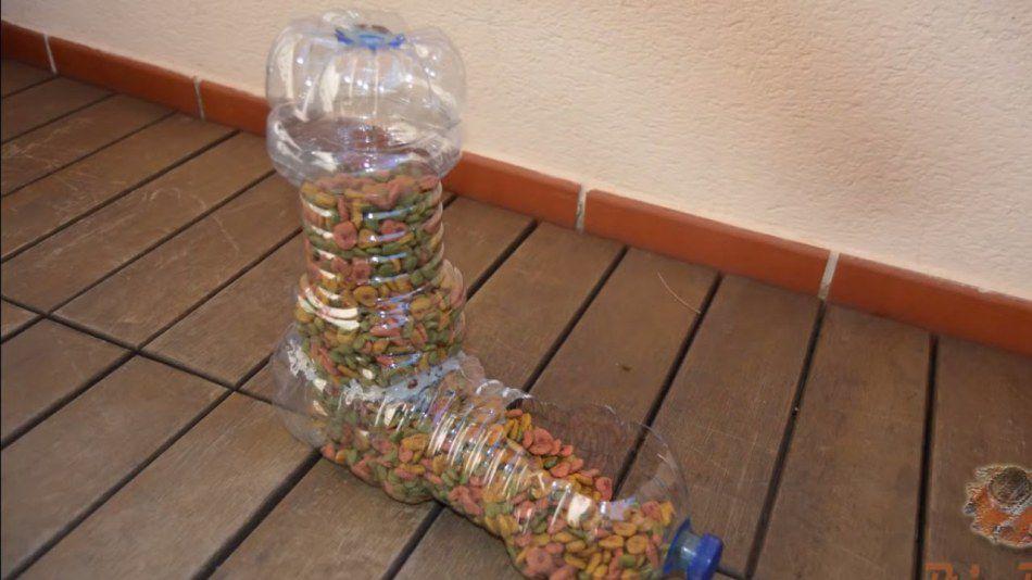 Автокормушка для кошек своими руками из пластиковых бутылок