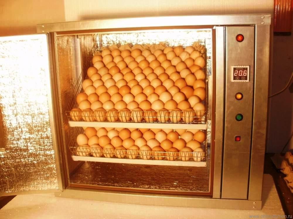 Инкубаторы для куриных яиц своими руками 42