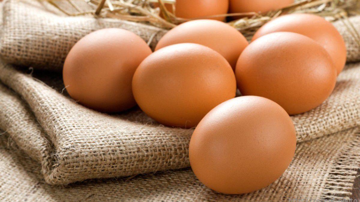 Внешний вид яйца куры Браун Декалб