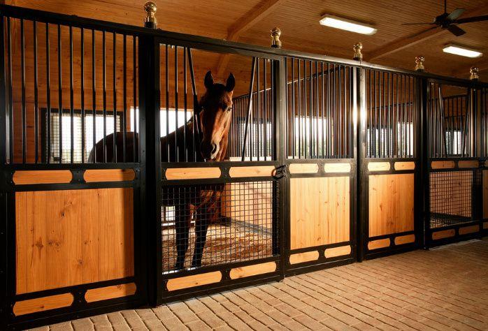 Денник должен быть достаточно большим, чтобы лошадь могла лечь
