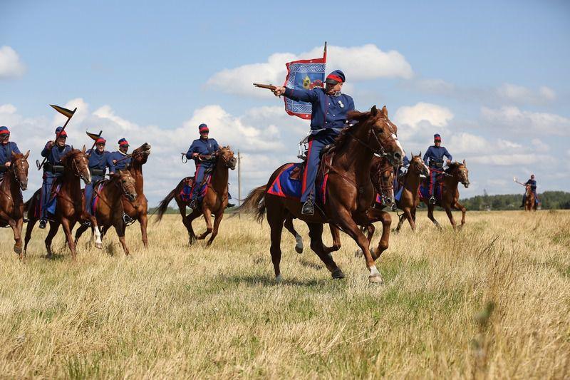 Донские лошади могут без устали преодолевать огромные расстояния