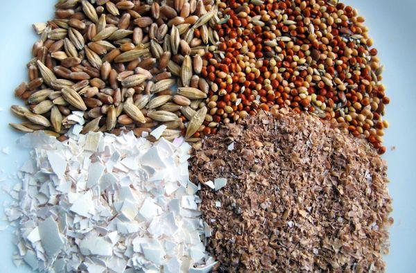 Изготавливая корм для кур вы можете комбинировать ингредиенты по разному