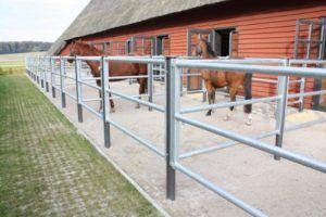 Паддоки для лошадей