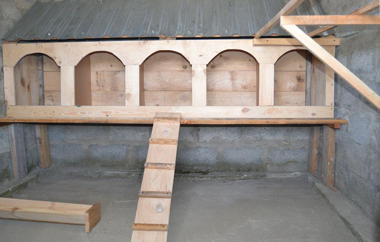 Пример горизонтального расположения гнезд в курятнике