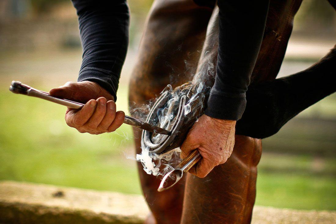 Ковка лошади - ответственное дело