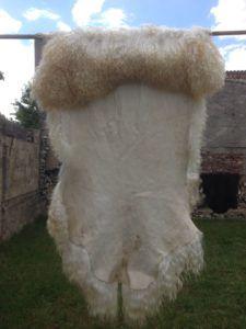 Шкура ангорской пуховой козы
