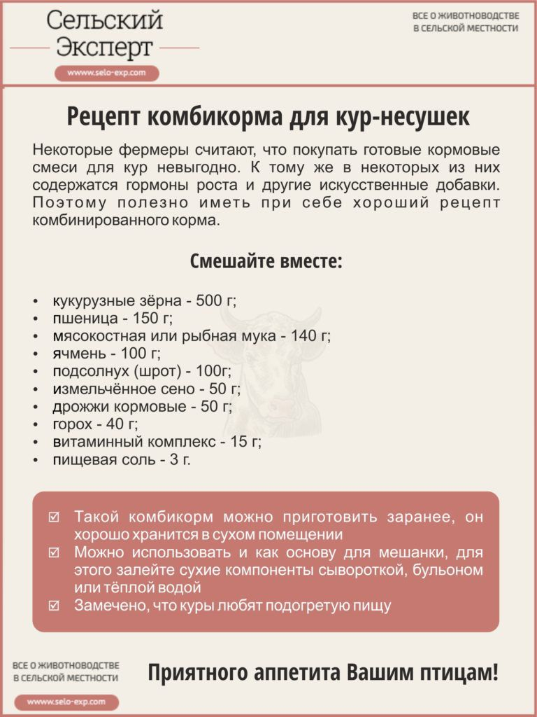 Рецепт комбикорма для кур-несушек