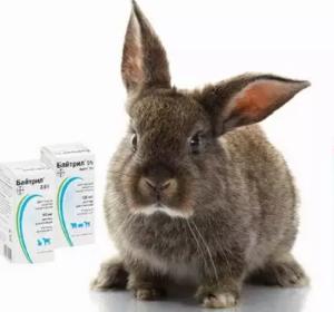Байтрил для кроликов