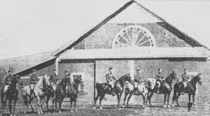 Происхождение Американской верховой лошади