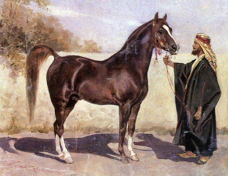 Бедуины нуждались в крепких и выносливых лошадях