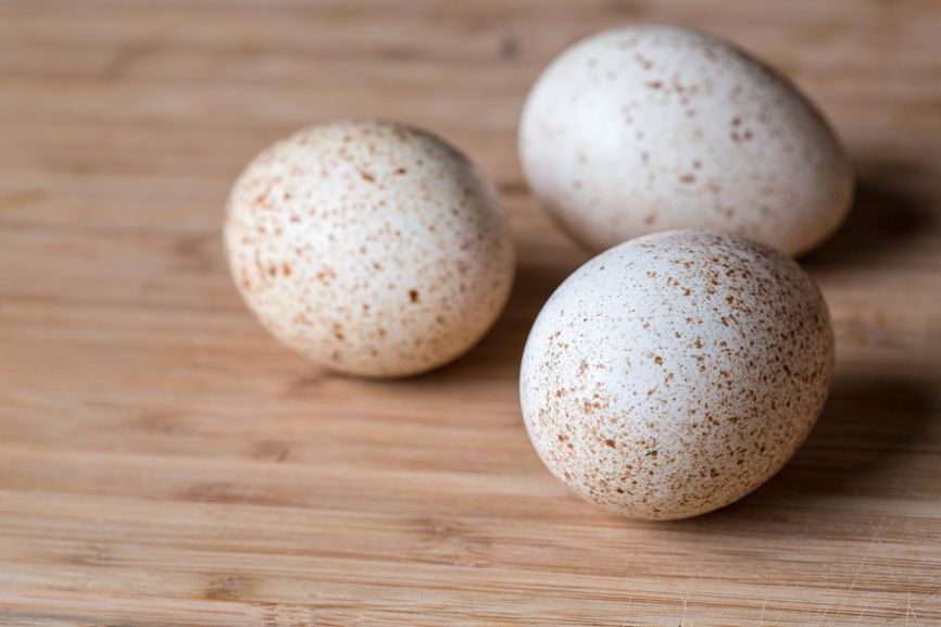 Яйца индоуток