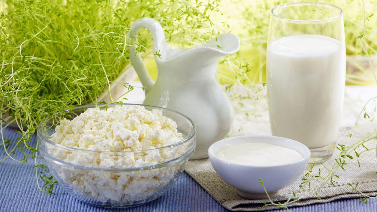 Блюда, приготовленные из молока коз чешской породы