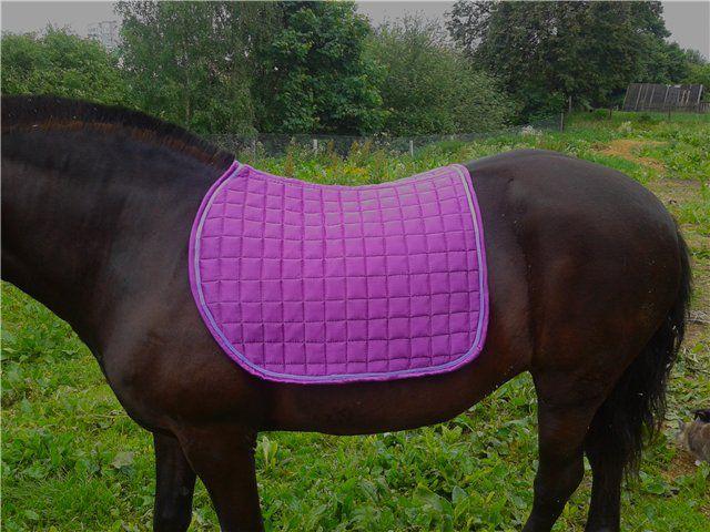 Вальтрап (потник) защищает спину лошади от наминов