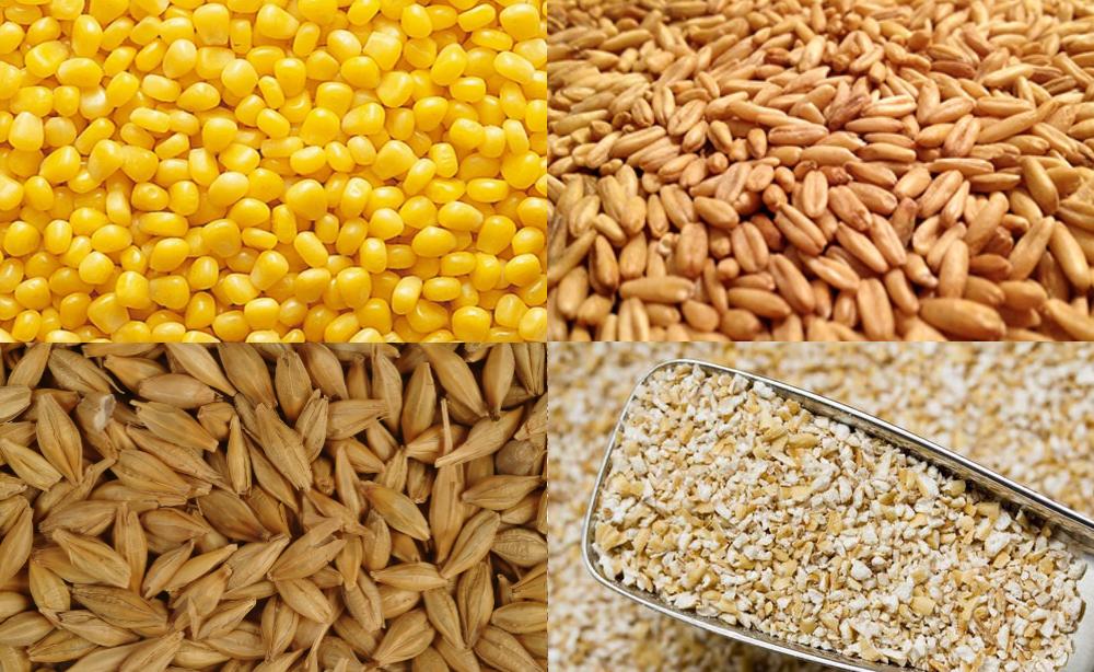 Варианты концентрированных кормов