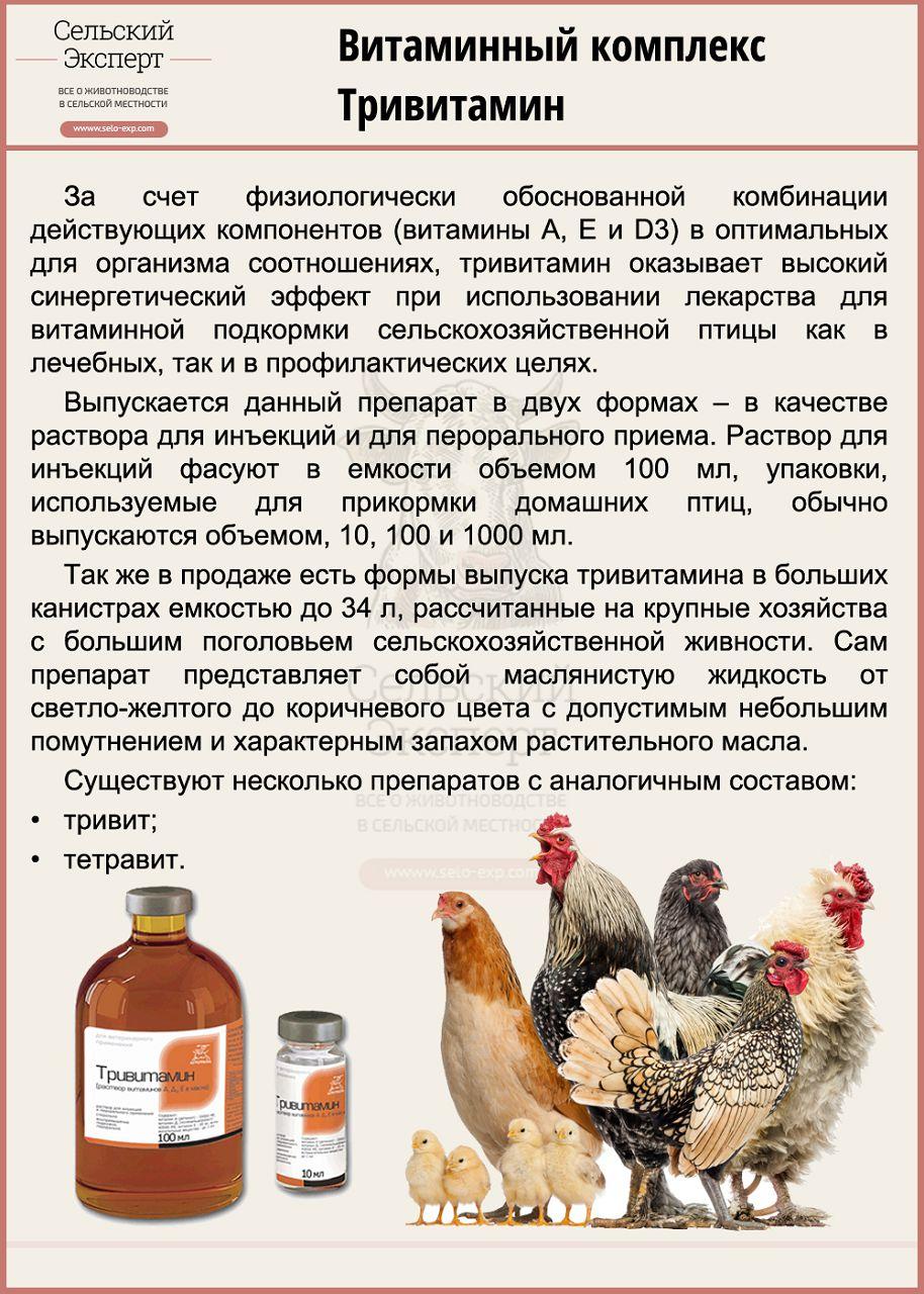 Витаминный комплекс Тривитамин