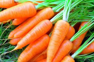 Витамин А содержится в моркови