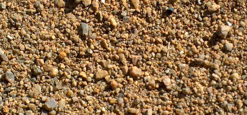 В качестве подстилки могут служить торф, крупный песок, дубовое корье
