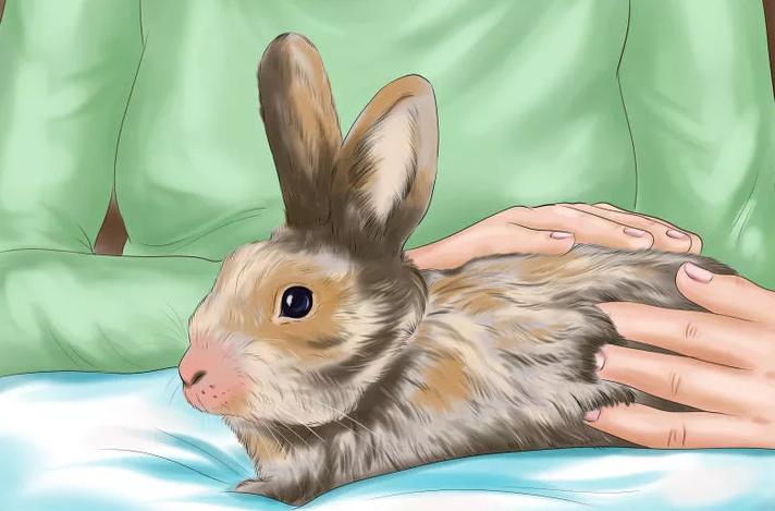 Гамавит применяют для крольчат и взрослых кроликов