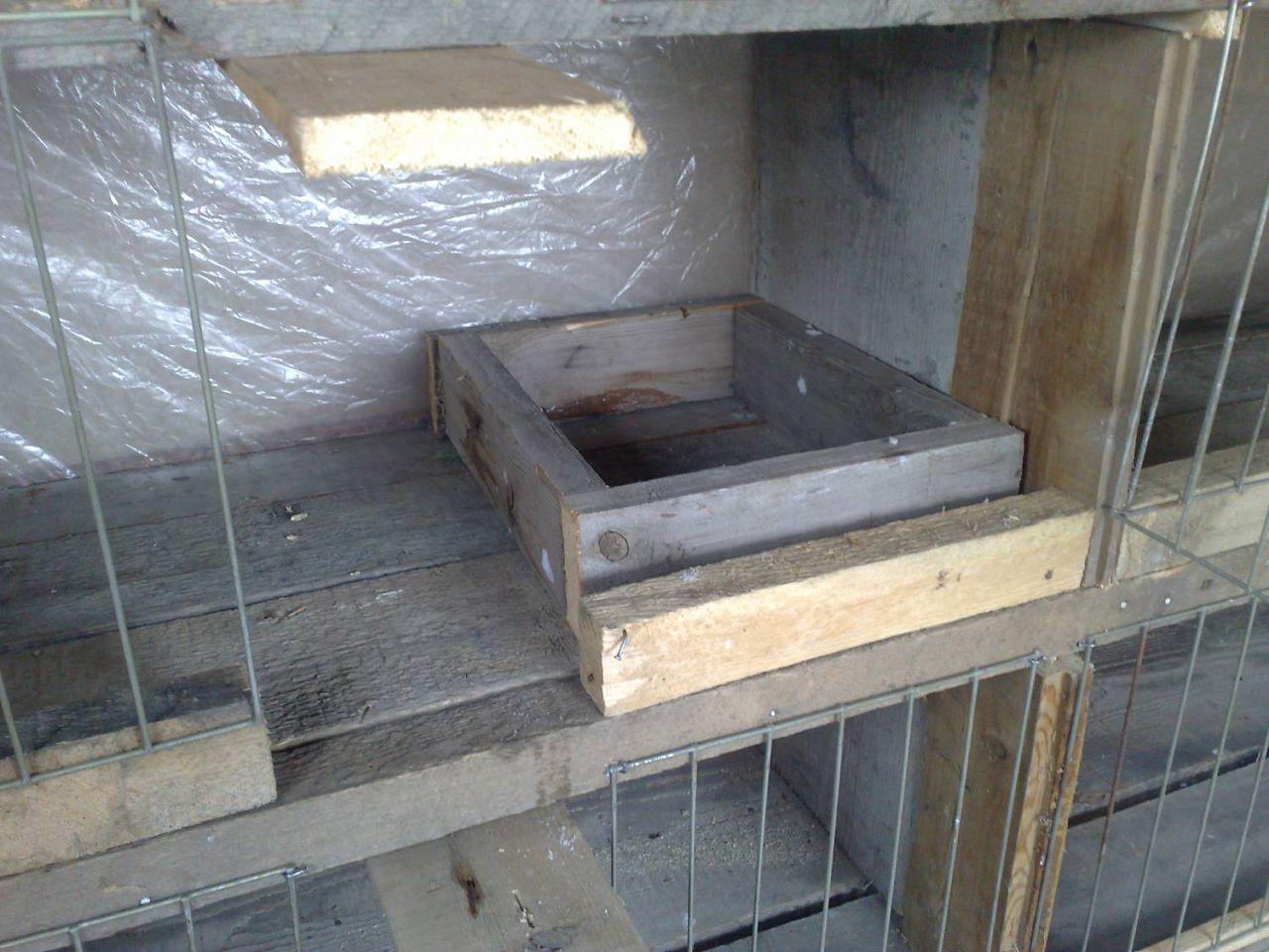 Гнездо в виде деревянного ящика