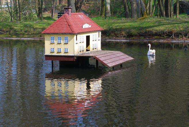 Дом для лебедей
