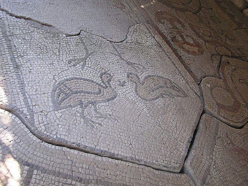 Изображение цесарок на древнегреческой мозаике
