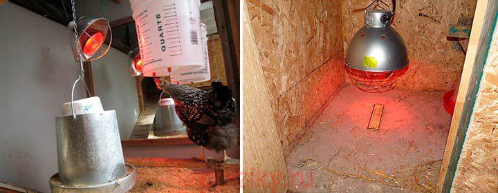 В качестве обогрева можно использовать инфракрасные лампы