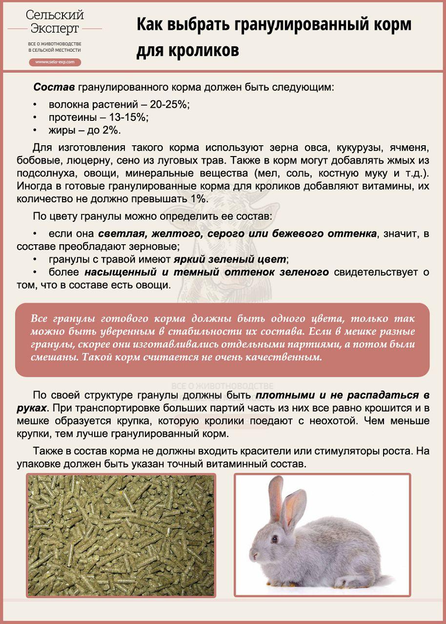 Как выбрать гранулированный корм для кроликов
