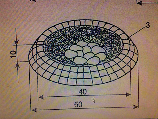 Круглое гнездо