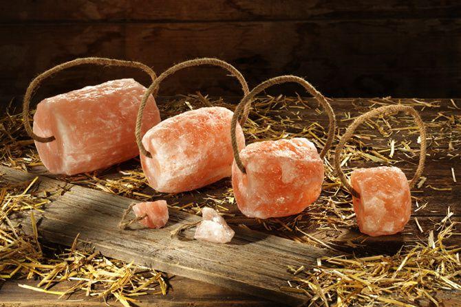 Лизунцы поваренной соли для лошадей