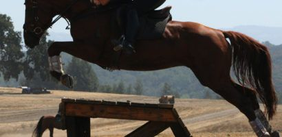 Лошади маневренны и подвижны, совершают мощные прыжки