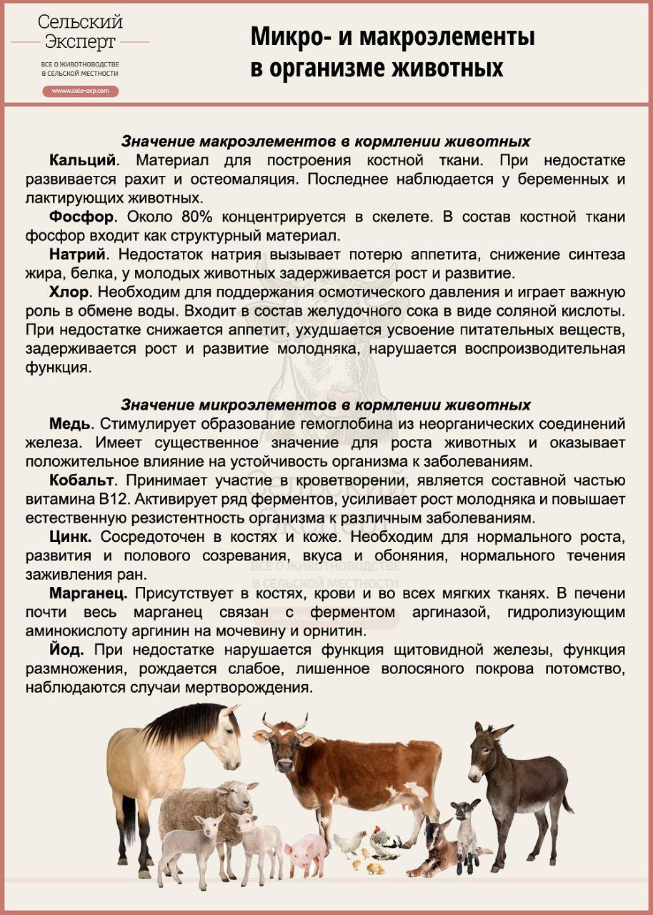 Микро- и макроэлементы в организме животных