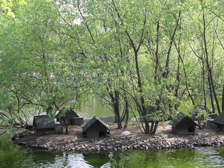 Наземные домики-гнезда