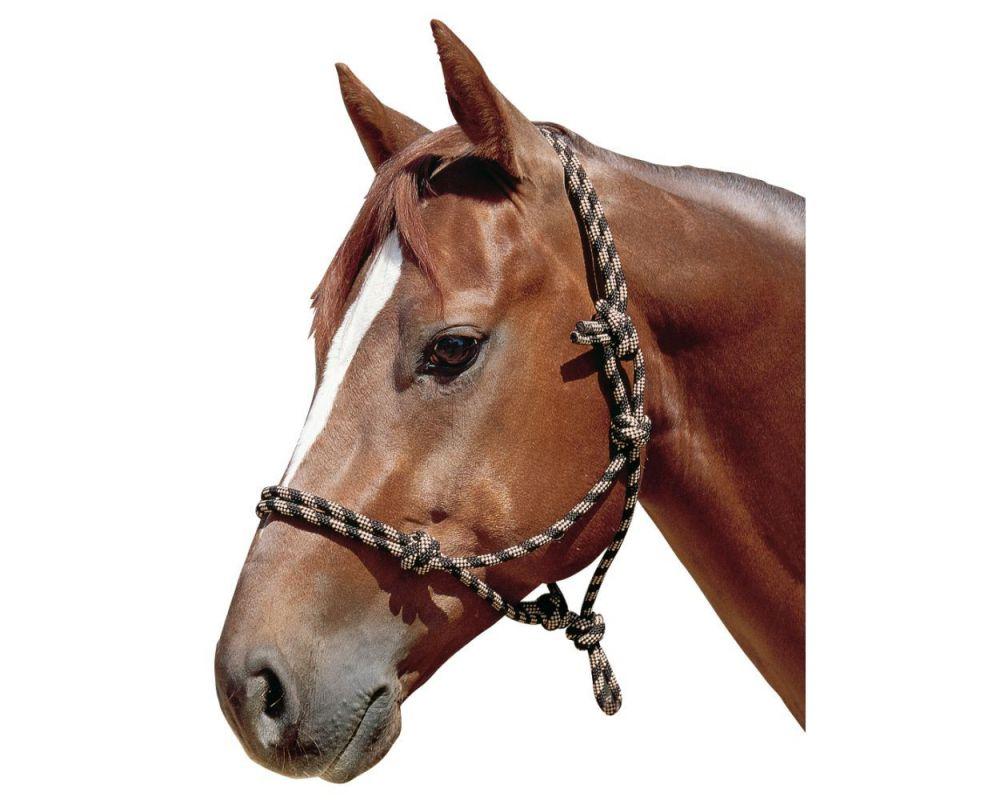 Недоуздок используется для вывода лошади из загона