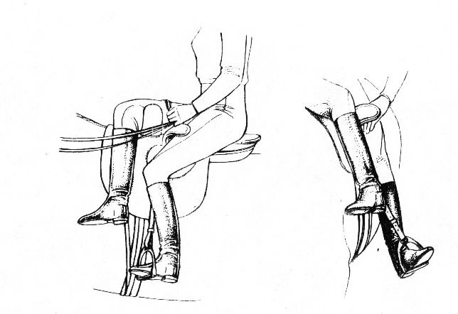 Положение ног всадницы в дамском седле