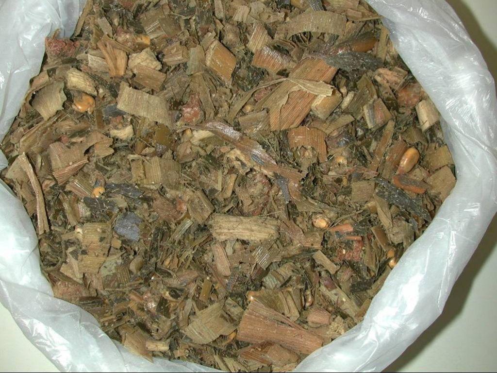 Легкоусвояемый силос готовят из свежей травы, ботвы и овощей