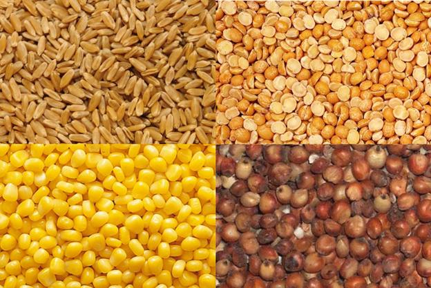 Популярные концентрированные корма