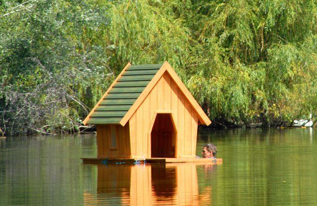 Пример лебединого домика