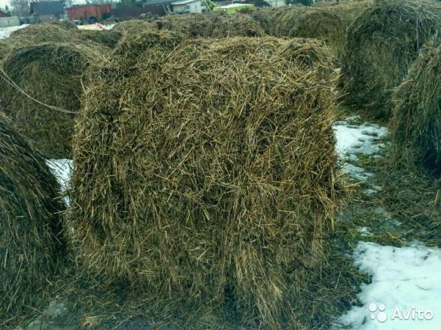 Скошенная и высушенная трава для корма скота