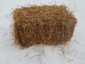 Солома (овсяная, пшеничная)