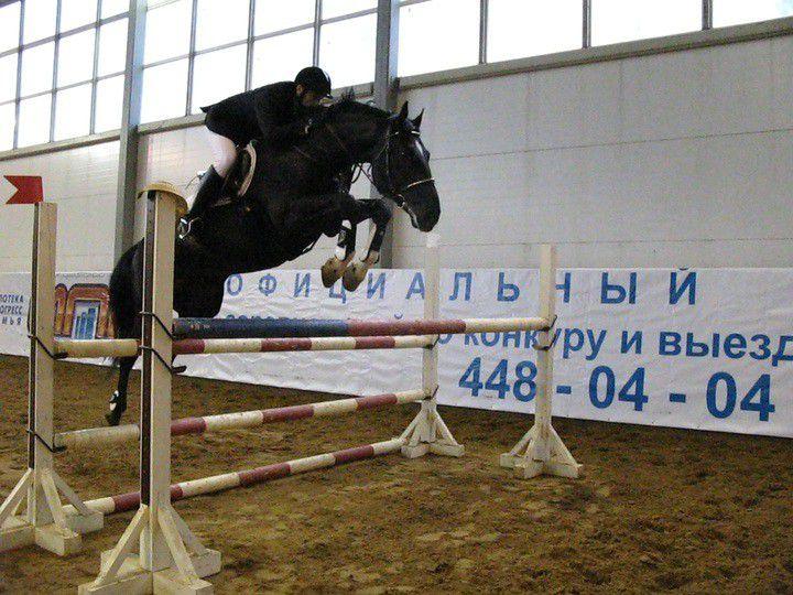 Спортивные конные соревнования