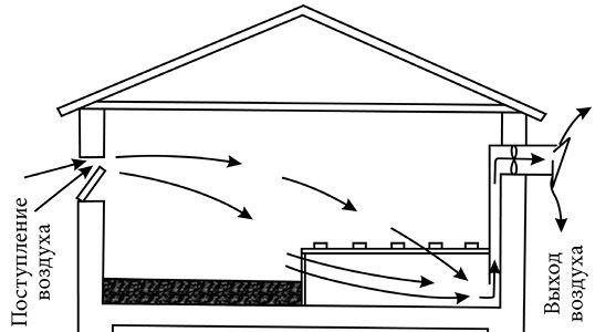 Схема вентиляции воздуха в птичнике