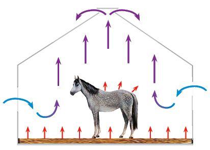 Схема микроклимата в конюшне