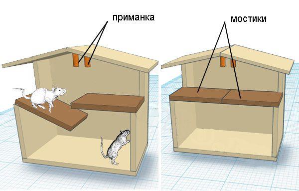 Схема работы крысоловки Цюрненра