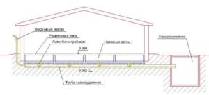 Схема строения щелевых полов и навозоотделения