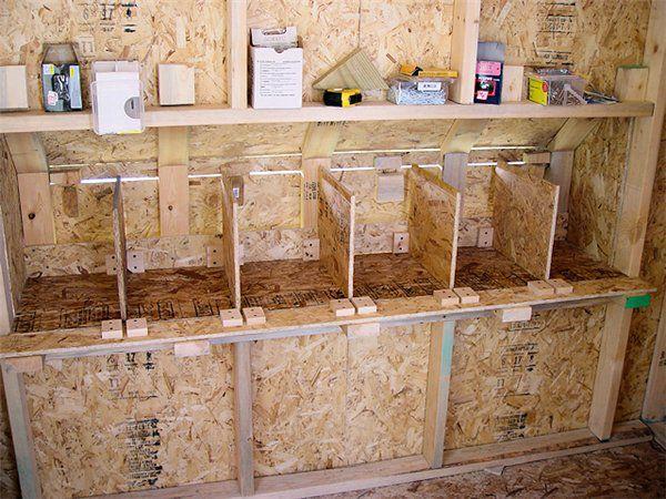 Фото гнезда для индеек несушек