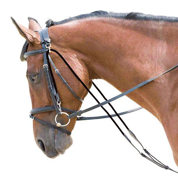 Шамбон на лошади позволяет снизить нагрузку на лошадь